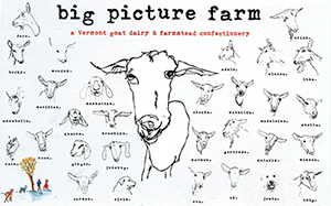 Big Picture Farm Goat Caramels cheese